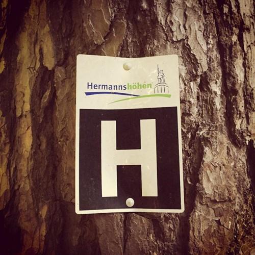Hermannsweg Etappe 1